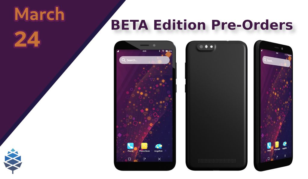 Pine64 announced the pre-order date of PinePhone BETA